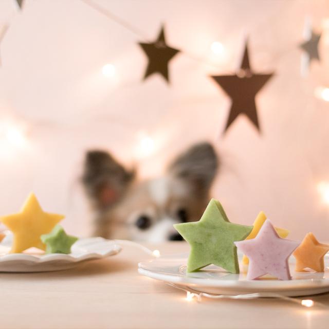 愛犬のクリスマスメニュー! カラフル星形ポテトの作り方