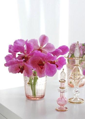 花びらの網目模様が特徴のひとつです。
