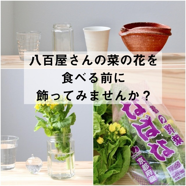 八百屋さんの菜の花を食べる前に飾ってみませんか?