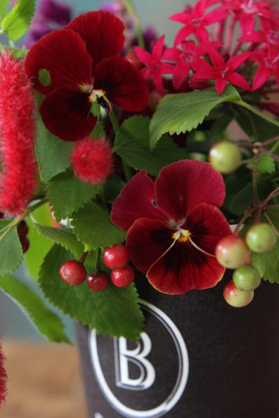 人気のコーヒーショップや、ベーカリーカフェのカップは、 デザインがシンプルでおしゃれ。 シックな色のカップに、赤い花がとても映えます。