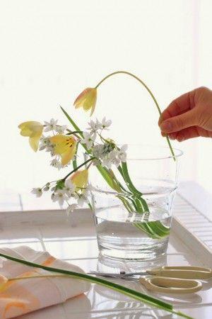 初めてでも簡単!ガラス花器のおしゃれな生け方