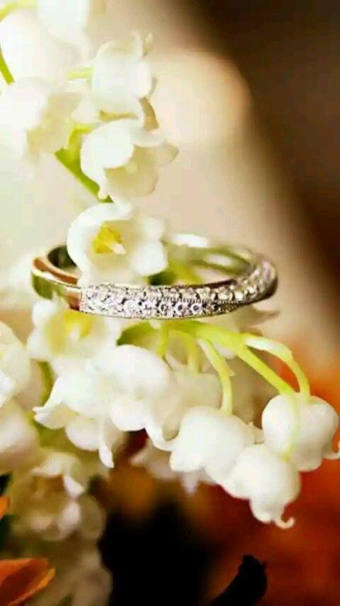 鈴蘭と指輪