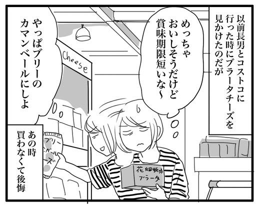 ti-zuのコピー3