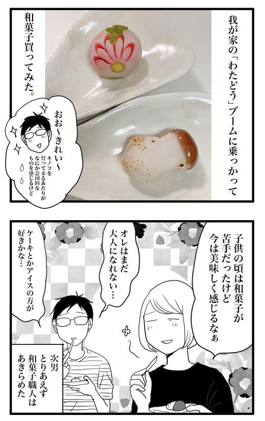 和菓子のコピー3