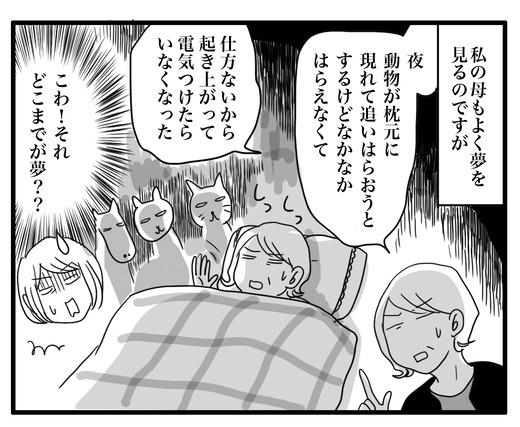ゆめのコピー4
