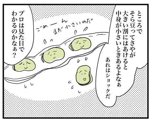 soramame のコピー3