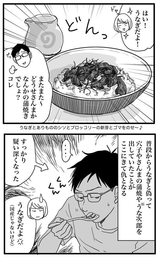 うなぎのコピー2