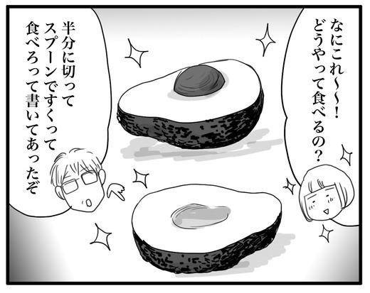 あぼかどのコピー2