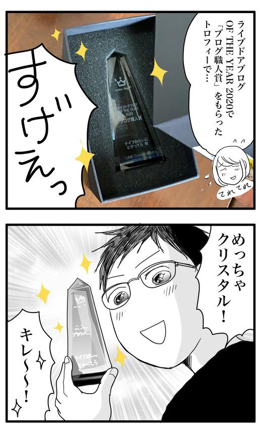 受賞のコピー2