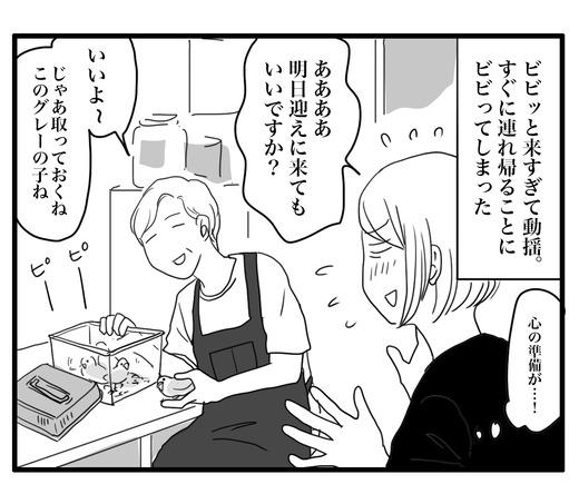 いんこ2のコピー4