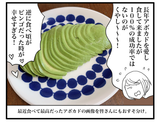 abokadoのコピー3