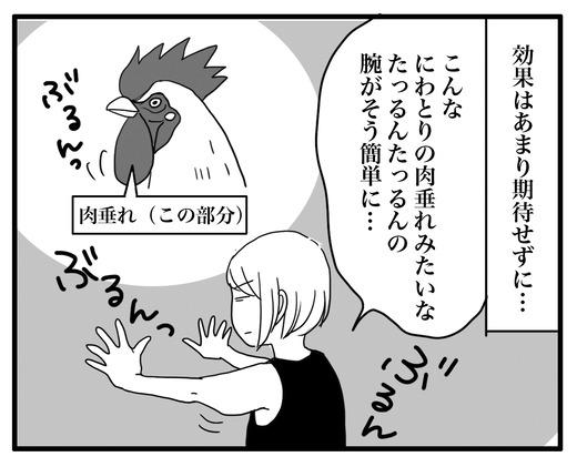 にわとりのコピー2