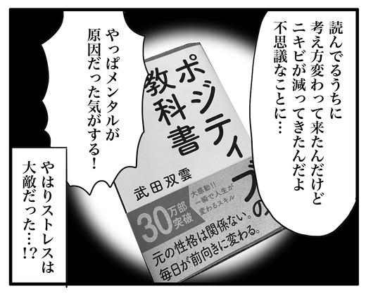 ニキビのコピー2