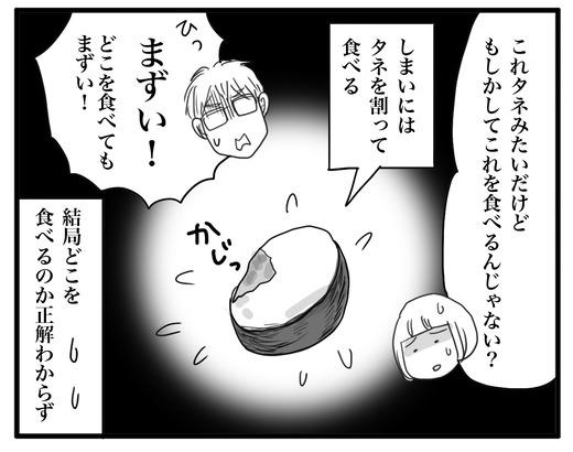あぼかどのコピー3
