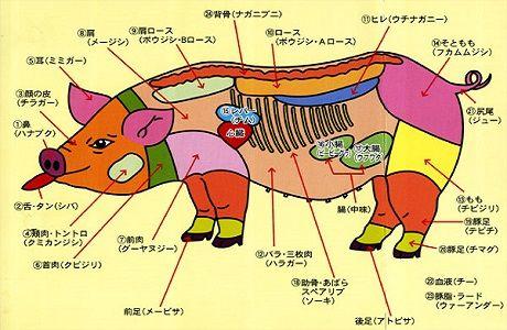 豚の日01