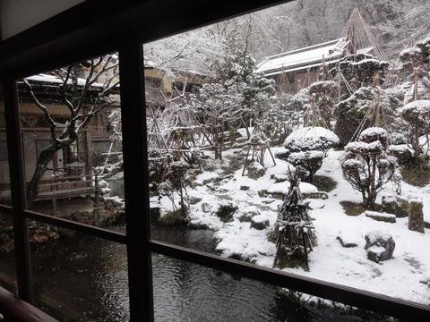 次回は是非桜か雪見ろうそくを!!