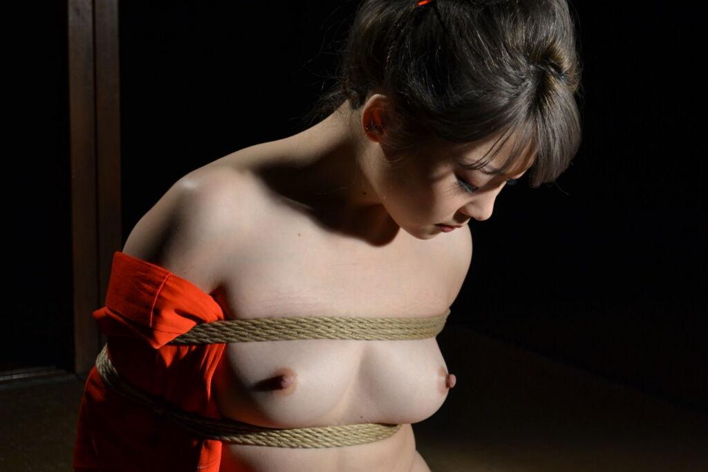緊縛画像 乳房