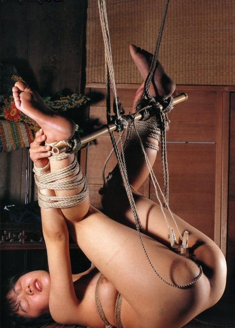 たぬき縛りの女 (7)