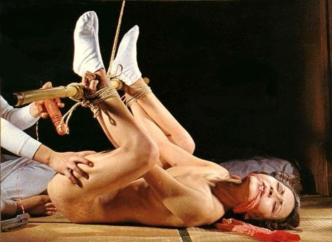 たぬき縛りの女 (6)