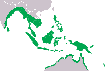 Crocodylus_porosus_Distribution