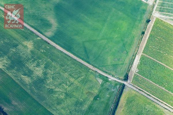 【クロップマーク】記録的な猛暑 イギリスのあちこちで古代遺跡のふしぎな幾何学模様が相次いで出現