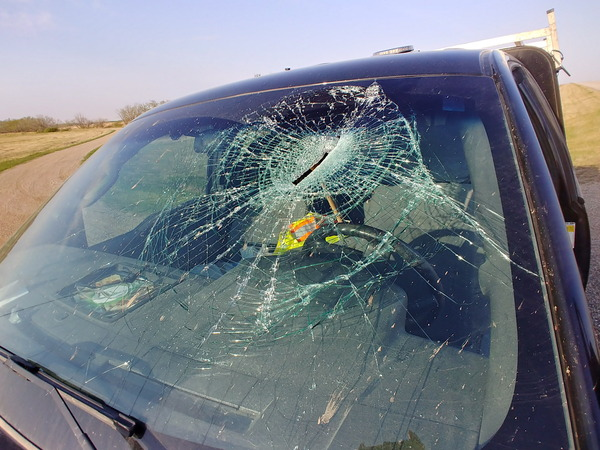 axe_through_windshield_20180529-3