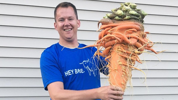 Heaviest-carrot_tcm25-497103