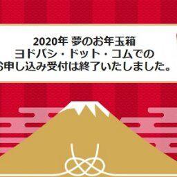 ヨドバシの2020年PS4pro、Switchお年玉箱の中身が判明!