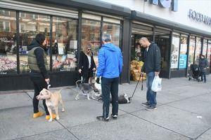スーパーの前で犬を待たせておく奴wwwww