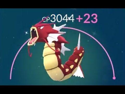 【ポケモンGO攻略動画】【Pokémon GO】赤ギャラドス強化!CP2817⇒????まで強化!  – 長さ: 6:04。