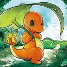 【ポケモン】ヒトカゲは尻尾の火が消えると絶命する←これ!