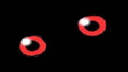 【画像】ポケモンで一番怖い「目」はコイツ ガチで恐怖すぎるだろ・・・