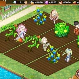 【キュイディメ】次元農場で神秘の種を生長させるとギフト収穫が可能に!