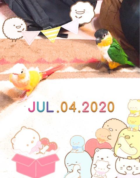 S__470196226