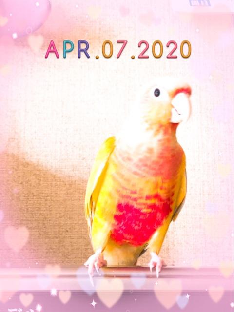 S__436551682