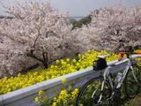 2012_04_25 boukyou 01