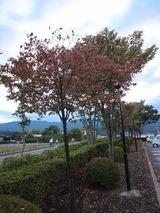 2012_09_28 kawaba 02