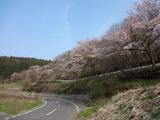 2012_04_25 boukyou 05