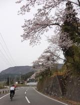 2012_04_30 asaren 03