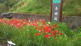 2011_05_26 asaren 03