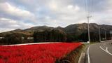 2015_10_29 asaren 02