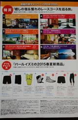 2014_10_28 perl 02
