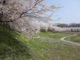 2012_04_25 boukyou 02