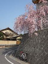 2012_04_25 boukyou 04