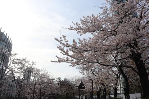 東京ミッドタウン六本木