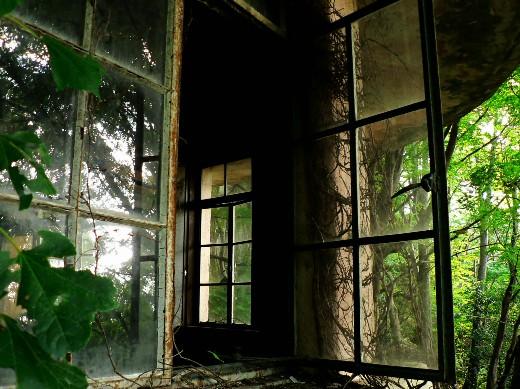 1階の開き窓