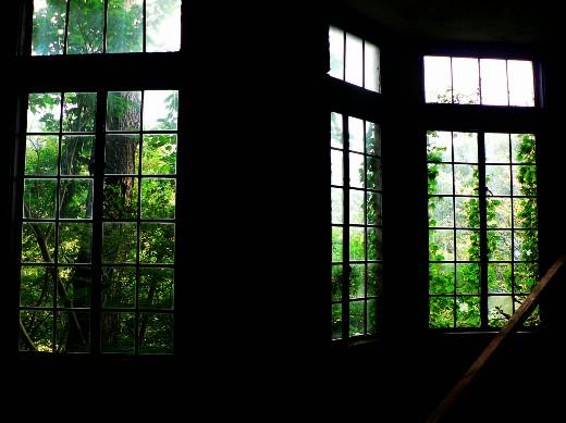 マヤの窓3