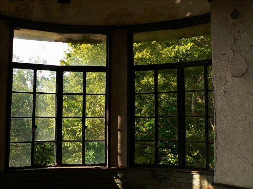 マヤの窓4