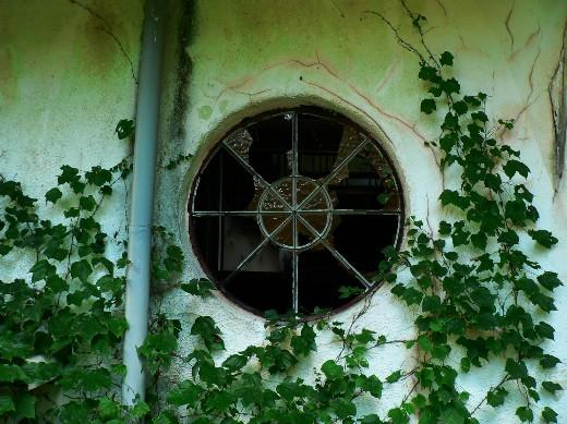 マヤの窓5