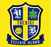team YELLOW BLOOD